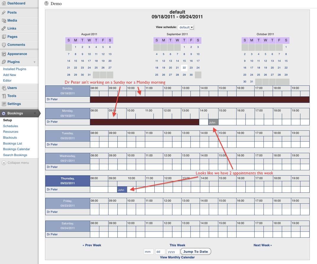 Bookings - Reservations calendar overview