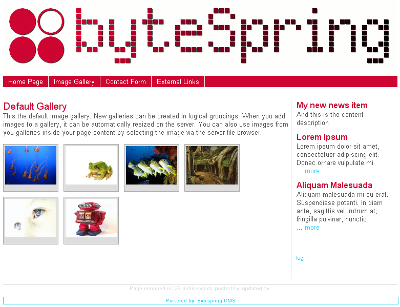 BytespringCMS screenshot 2