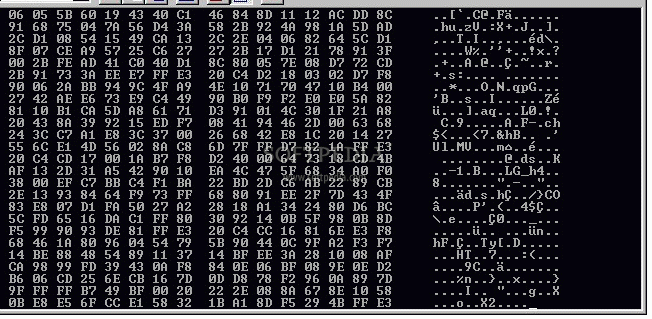 Hex dump screenshot 1