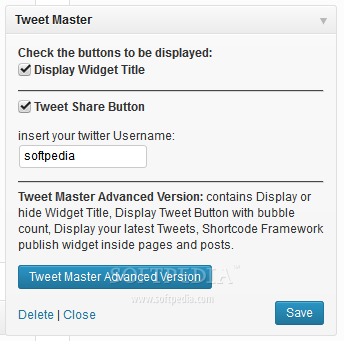 Tweet Master - Sidebar widget options as seen in the free version