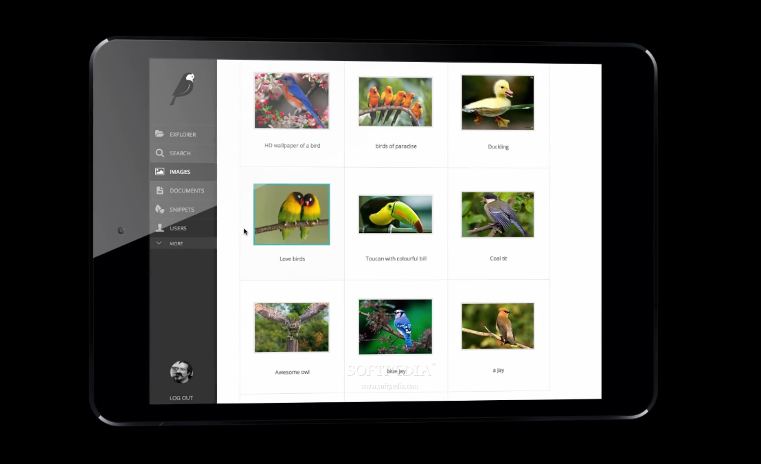 Wagtail - Wagtail also includes support for responsive layouts and mobile devices