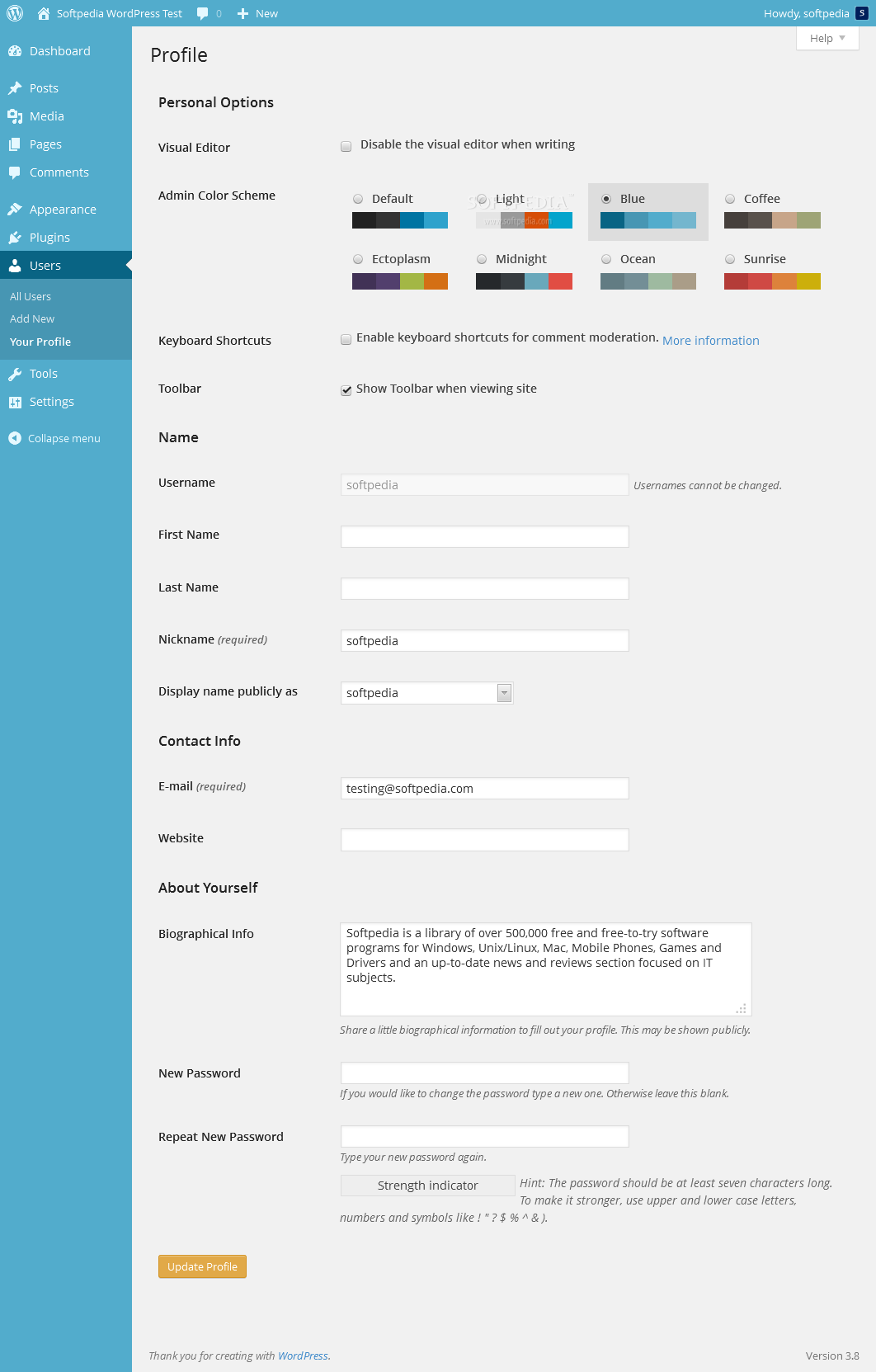 WordPress - A light blue theme is also included